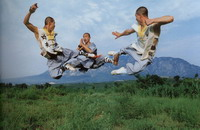 Best 10 Martial Arts Schools in China